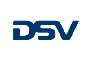 DSV logo 2